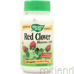 Red Clover Blossom and Herb 100 caps NATURE'S WAY