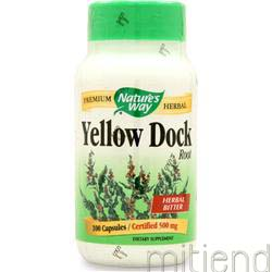 Yellow Dock Root 100 caps NATURE'S WAY