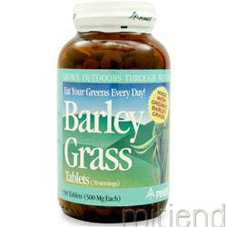 Barley Grass 500 tabs PINES