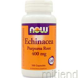 Echinacea Purpurea Root 100 caps NOW