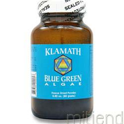 Blue Green Algae Powder 80 gr KLAMATH