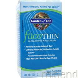 FucoThin 90 sgels GARDEN OF LIFE