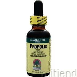 Propolis Alcohol Free 1 fl oz NATURE'S ANSWER