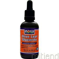 Olive Leaf Glycerite 2 fl oz NOW